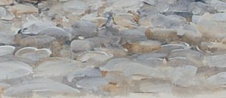 sea pebble / ζωγραφιστό θαλασσινό βότσαλο
